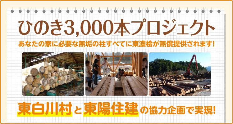 ひのき3000本プロジェクト